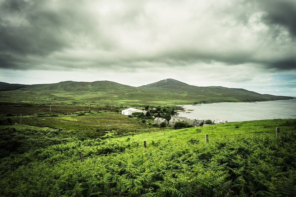 Bunnahabhain distillery and surrounding countryside covered in ferns
